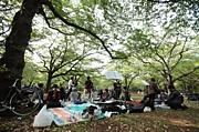 第35回東京でくるりを演奏しませんか 2016年11月12日 東京都 | 東京でくるりを演奏しませんか | mixi