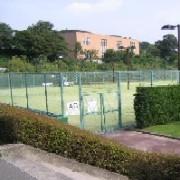 テニスサークル・Step-Up