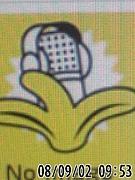 FM バナナ