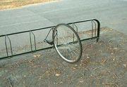 自転車盗まれました
