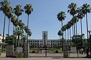 2013年度 大阪市立大学 新入生