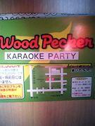 ♡ Wood Pecker♡