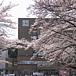 日本大学工学部