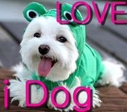 みんな大好き ☆i DOG☆