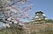 大阪城でジェンベ(ジャンベ)〜