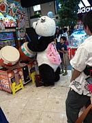 仙台V系パンダ