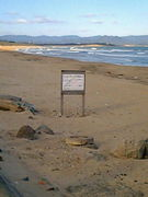 砂の上を裸足で歩く
