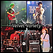 Velvet Variety