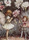 my fairy drip ♪゚