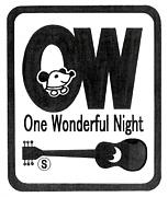 One Wonderful Night