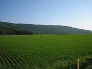 マニアック北海道