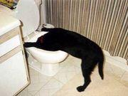 ☺酔いどれparty☻