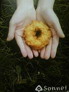 手作りドーナツのソネット