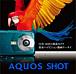 AQUOS SHOT SoftBank 002SH