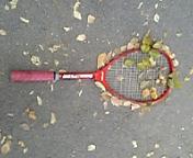☆青学☆ソフトテニス部 55期