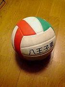 ★東校排球会★