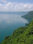 Lake Viewing