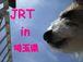 JRT in 埼玉県