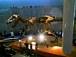 名古屋から恐竜を見に行く