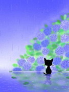 小田原 Little Cat