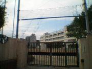 77年卒渋谷区立本町中学校OB