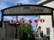 ☆石神井町さくら保育園☆