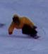 千葉県スノーボード同好会