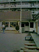 浦安幼稚園1996年度卒園