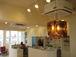 cafe風 hair salon Jelly fish
