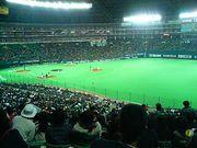 近大サンデーズ 2007