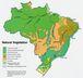 ブラジル投資
