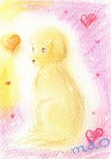 Angelic Drop〜癒しの空間〜