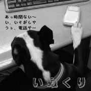 いぬくり(いぬ*クリエーター)
