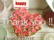 感謝の気持ちのお花を贈りたい