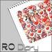 Ragnarok Diary