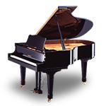 国際エアピアノ協会