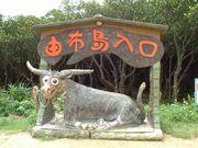 沖縄で働いていたよ