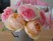 バラの花を咲かせませんか