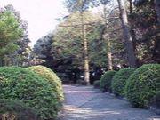 静岡大学 理学部数学科!