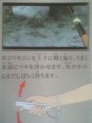 Wiiゼルダ、釣りでつまずく‥‥