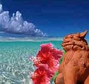 好き?南の島…ペット…オフ会…