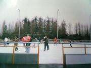 SIA-しらこばとアイススケート同盟