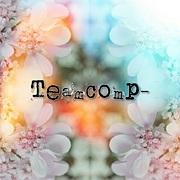 TeamComp-