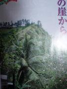 坂東眞砂子を崖から落とす会