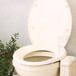 トイレは洋式に限る