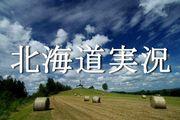 北海道実況
