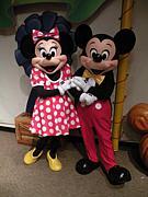 海外Disney写真集