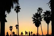 ベニスビーチ ★ Venice Beach