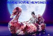AYUSE KOZUE NEW SINGLE