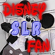 Disney SLR Fan